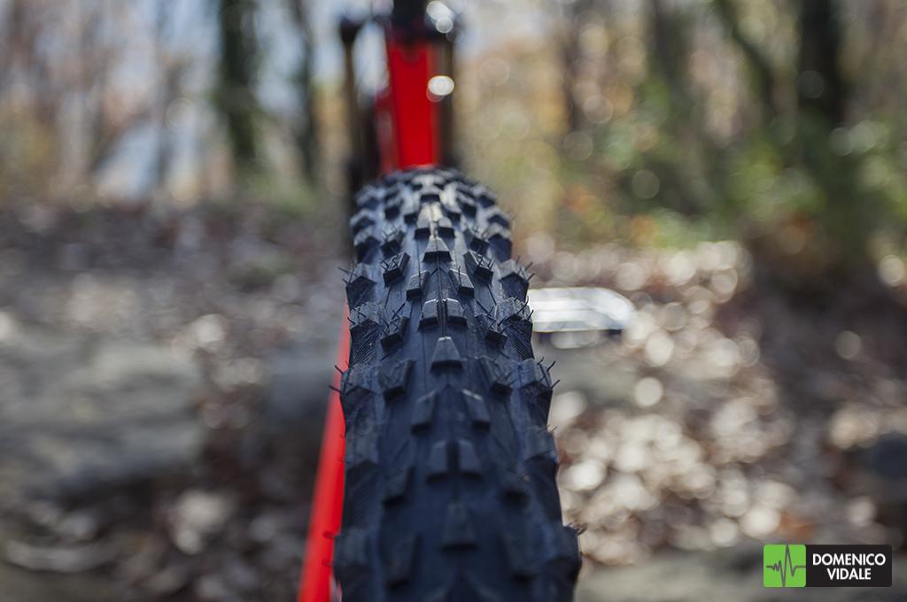 test_enduro_wild_racer_enduro_rear-3