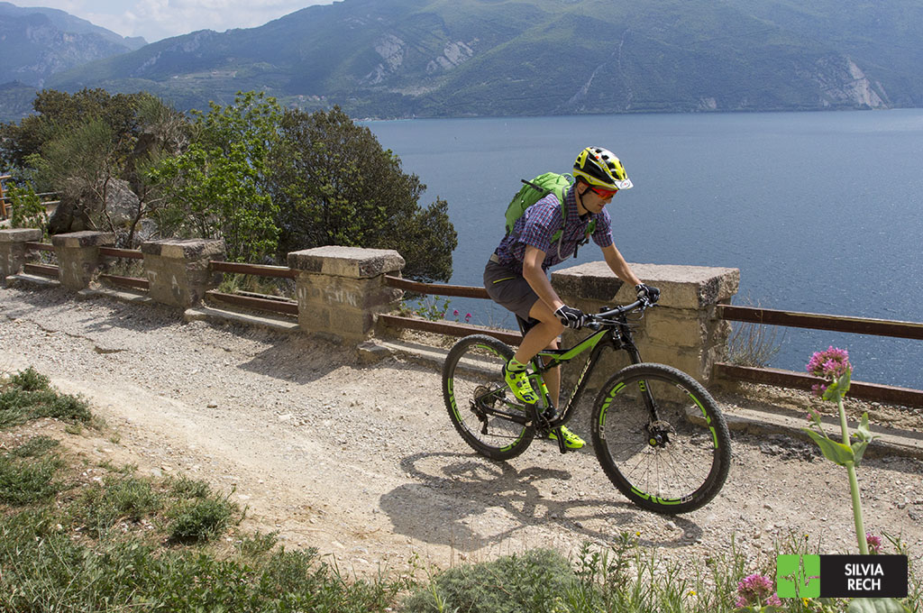 test_cannondale_scalpel_2017_c-5