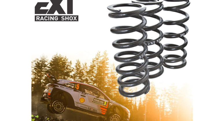 Nuove molle EXT Racing Shox