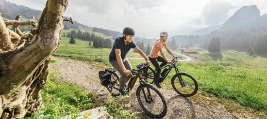 E-bike crossover Flyer: versatilità e piacere di pedalata