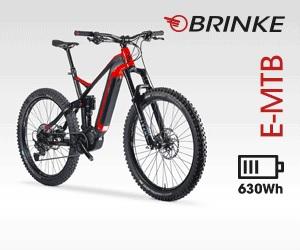 BRINKE 728 2021