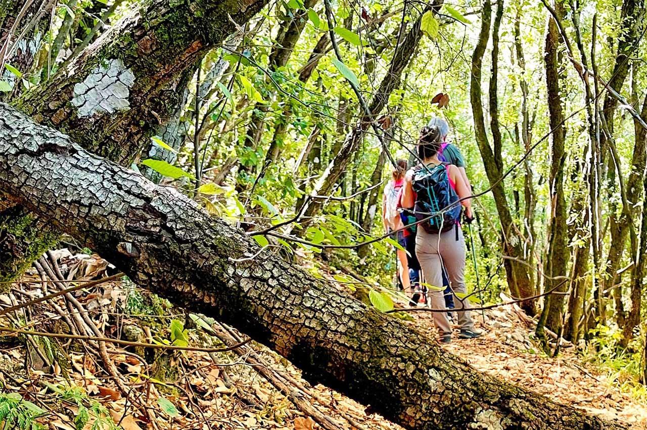 Umbria Crossing Outdoor Festival: la festa del trail, della MTB e del trekking